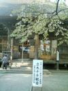 2008428_2